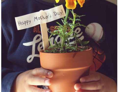 flower pot mothers day