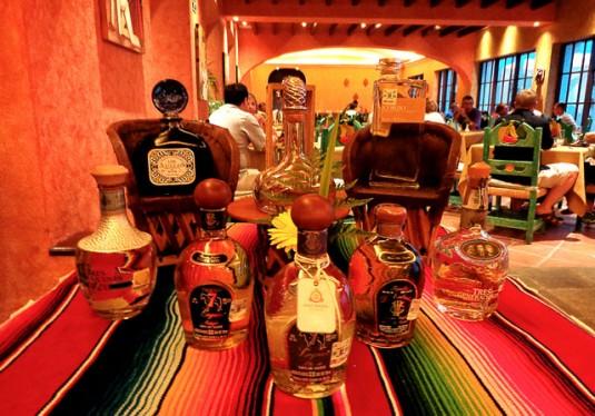 tequila tasting Riviera Maya