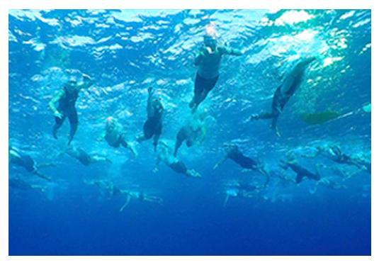 Hacienda Tres Ríos - Events | Bacalar Open Water Marathon